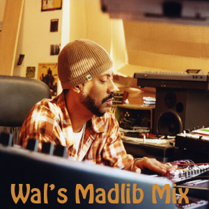 Wal's Madlib Mix-FREE DOWNLOAD!
